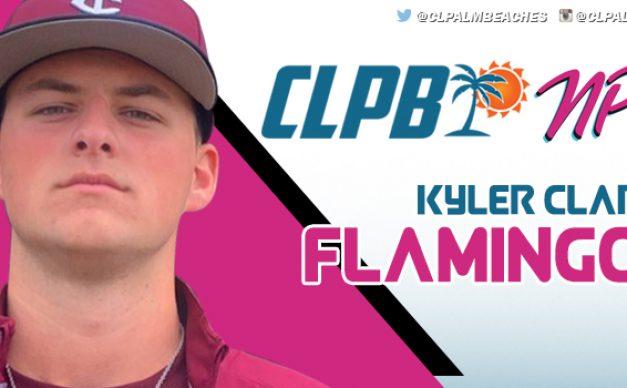 Kyler Clarke - Flamingos